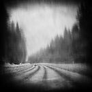 Estonian road by zdepe