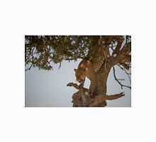 Leopard climbing down tree in dappled sunlight Unisex T-Shirt