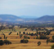 Indigo Valley by Natalie Ord