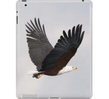 African fish eagle flying with wings raised iPad Case/Skin