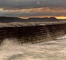Lyme Regis  -  The Cobb  by James  Key