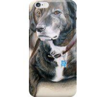 My Pet Brindle Dog Iphone Case iPhone Case/Skin