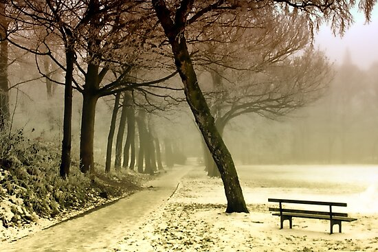 Cold Tranquility by ImageMonkey