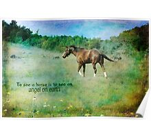 To see a horse is to see heaven on earth Poster