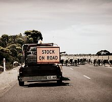 Aussie Road Block by Alysia Becker