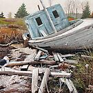 """""""Beached"""" by Frank Boudreau"""