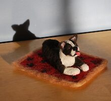 Brutus the Boston Terrier by NaturesPlayroom