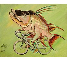 Hogfish on a Bicycle Photographic Print