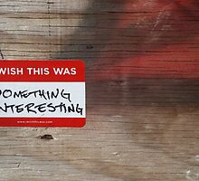 I wish this was: something interesting by Erin Nelson