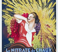 Leonetto Cappiello Affiche Nitrate Le Gaulois by wetdryvac