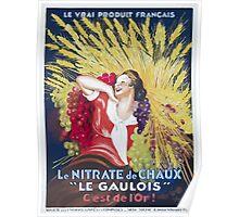 Leonetto Cappiello Affiche Nitrate Le Gaulois Poster