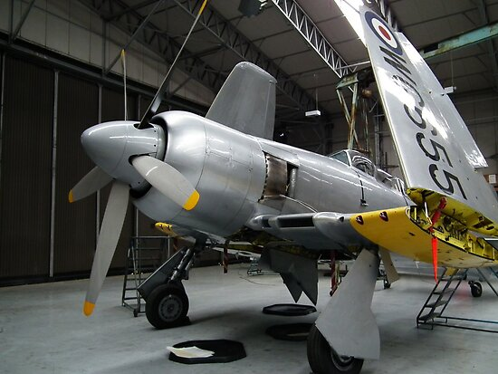 Hawker Sea Fury(WG655) by Andy Jordan