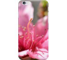 Pink peach blossom in macro iPhone Case/Skin