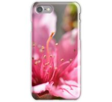 Pink peach blossom in macro iPhone Case/Skin