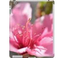 Pink peach blossom in macro iPad Case/Skin