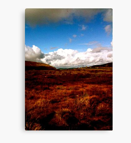 Landscape on Wicklow Mountains Canvas Print