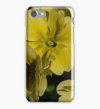 Yellow flowers Leith Park Australia 20150904 0266   iPhone Case/Skin