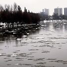 River ice by Shulie1