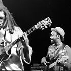 1983 - steel pulse by moyo