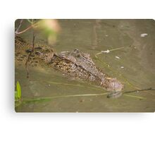 Never smile at a Crocodile  Canvas Print