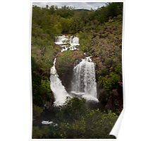 Florence Falls  Poster