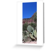 Cactus Mountain Greeting Card