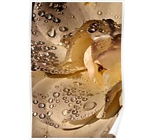 Golden jewels on a silky soft rose petal Poster