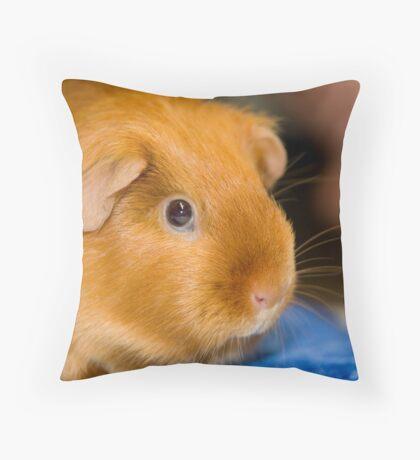 Cavy Throw Pillow