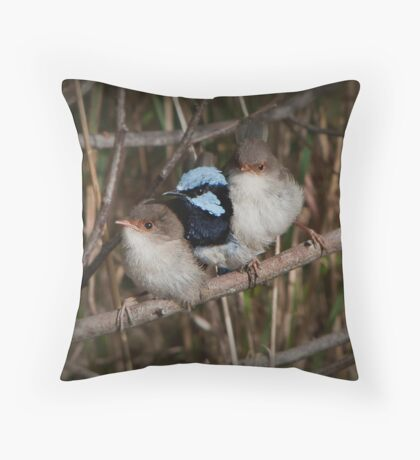 The Wren Family Throw Pillow