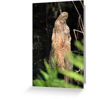 Cypress Swamp Illusion Greeting Card