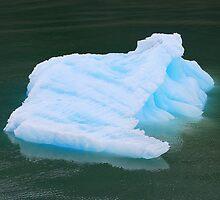 Blue Ice Block by Neville Gafen