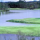 Twin Bridges Golf Course by Charldia