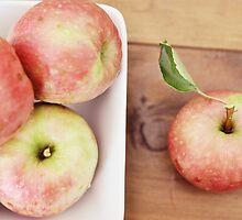 first harvest :: apples {3} by RachelMeszaros