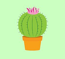 Single green round flowering cactus by jazzydevil