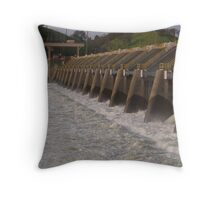 The Nimbus Dam Release Throw Pillow