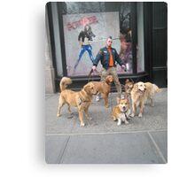 Dog master Canvas Print