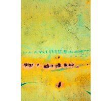 terra Photographic Print