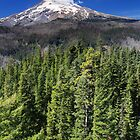 Dominion - Mt. Hood (vertical) by Tula Top