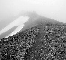 Along the Ridge by singularhiker