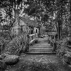 Australia House -Monochrome by Dianne English