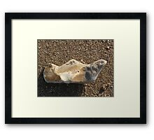 Aladdin Lamp Pebble Framed Print