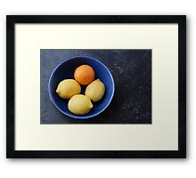 O and L Framed Print