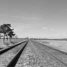 Tracks in black and white by mltrue