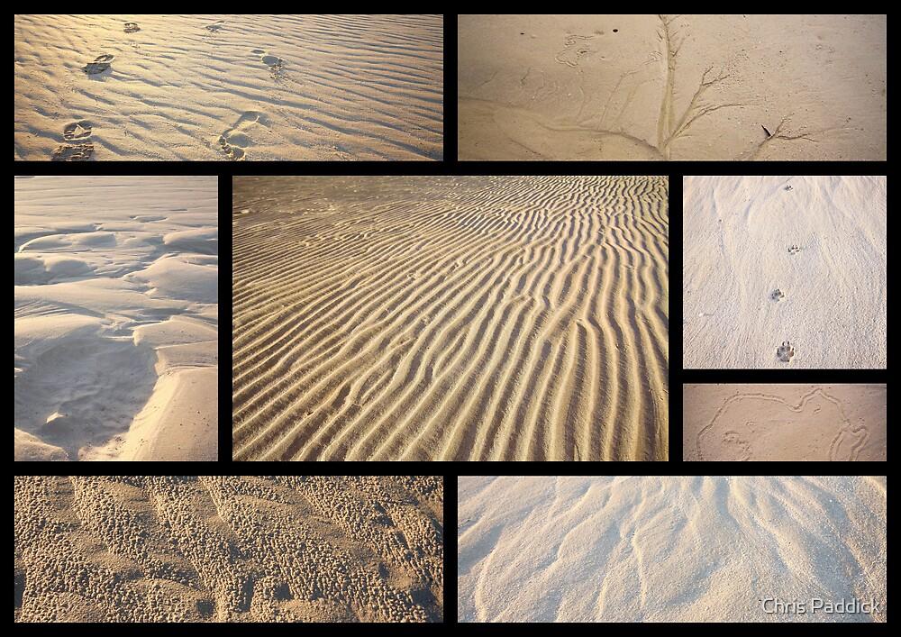 Chronicles Of Sand by Chris Paddick