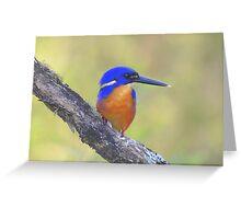 """ Azure Kingfisher  Marlo Vic."" Greeting Card"