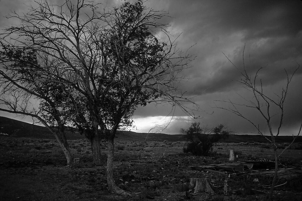 Lone Survivors by BodieBailey