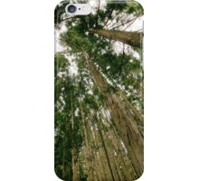 Woods Forest Trees photo iPhone Case/Skin