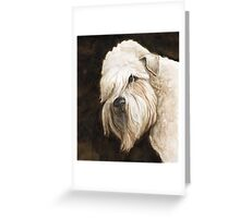 Soft Coated Wheaton Terrier Greeting Card