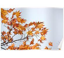 advanced Autumn Poster