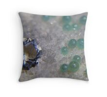 Buried Treasuare Throw Pillow